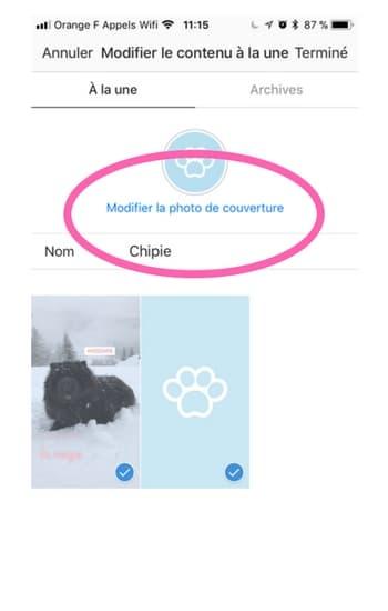 Comment créer des icônes de profil pour tes instastories